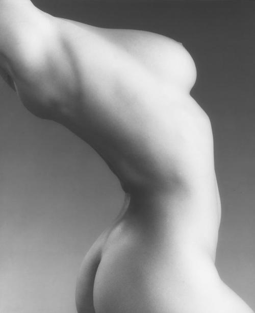 realityayslum:  Robert Mapplethorpe - Lisa Marie / Torso, 1987. … via The Robert Mapplethorpe Foundation
