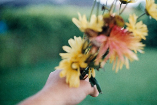 9tears:  gildings:  // by Rachel Dowda on Flickr.   (via imgTumble)