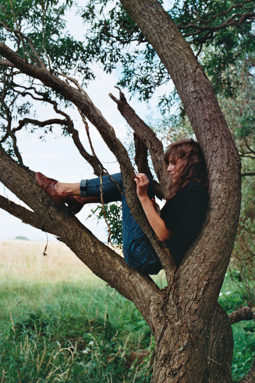 Chillin' in a tree.
