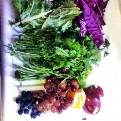 Yesterday's juice - Collards, purple cabbage, parsley, cilantro, apples, grapes, blueberries, oranges, and celery
