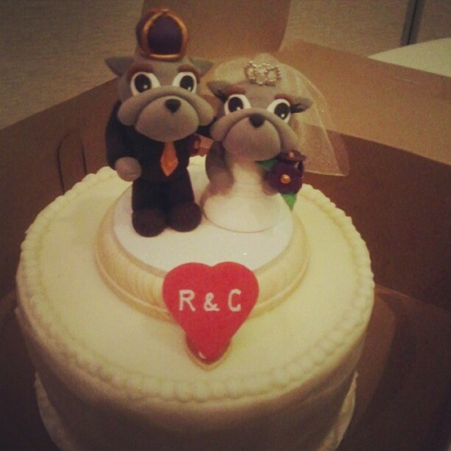 @char_lywood & @phrozenthumbz #epic #jmu #wedding #cake topper!  (Taken with Instagram)