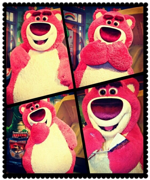 Wdw Lotso collage