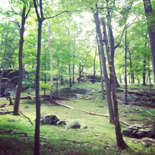 Saturday Hike on Long Path (Taken with Instagram at Bear Mountain State Park)