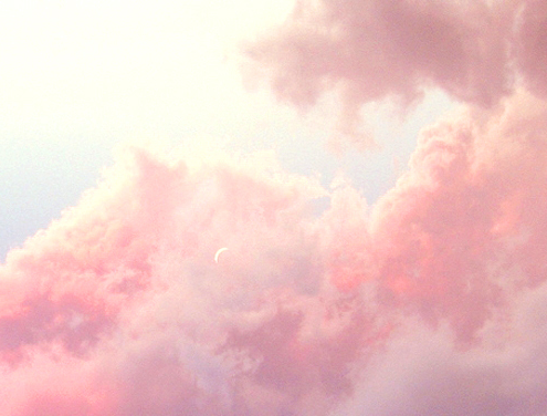 the-oasis:  perfect pink clouds
