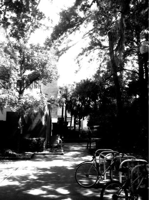 UF. Walking somewhere for lunch.