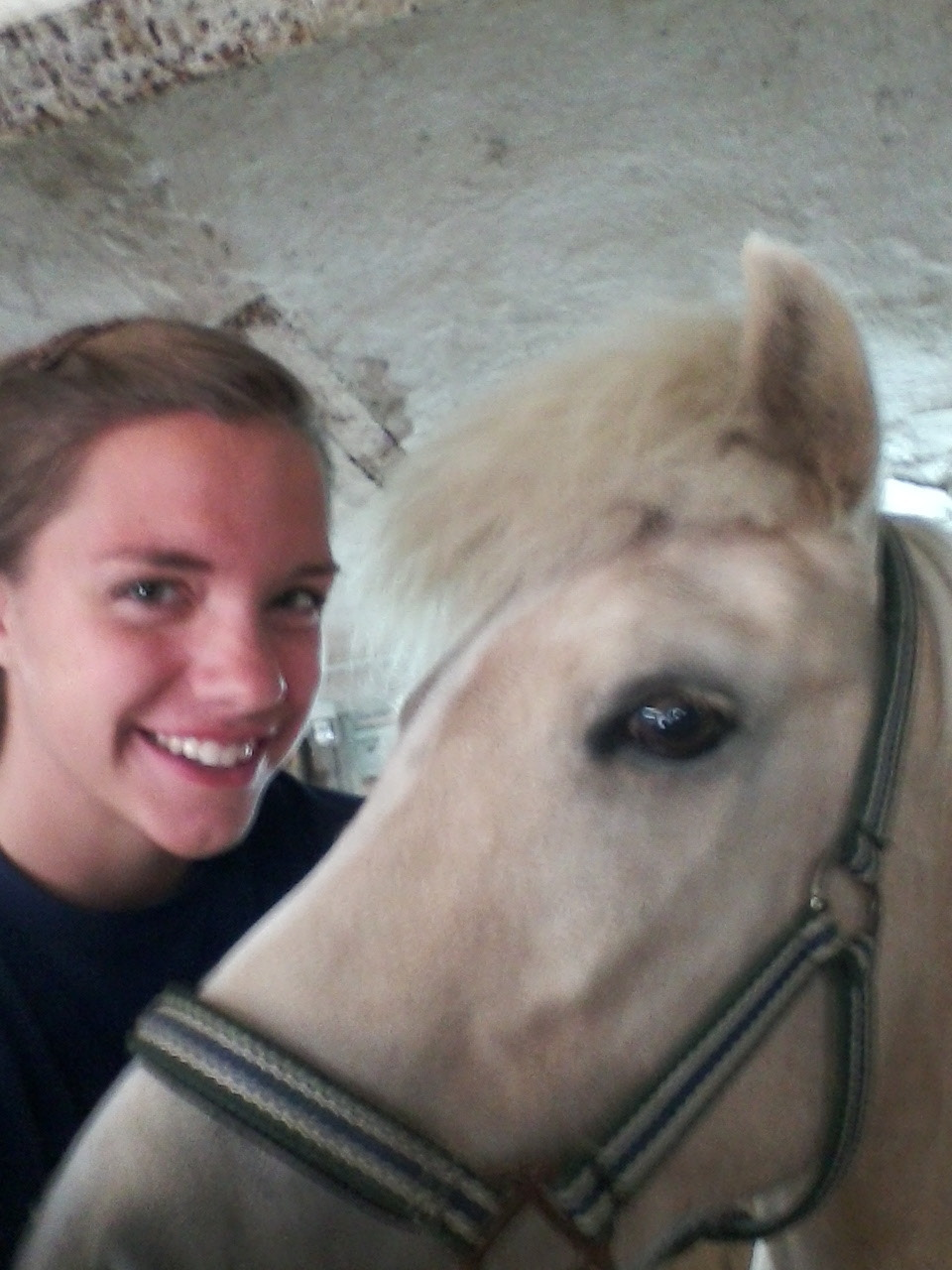 This is my new bff, Star. Since she is an Icelandic pony, her name is actually the Icelandic word for star, but sadly, Iceland and language do not a pronouncable word make. So. Star.  She's a wonderful pony.