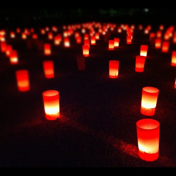 Nara Tokae lantern festival. (Taken with Instagram)