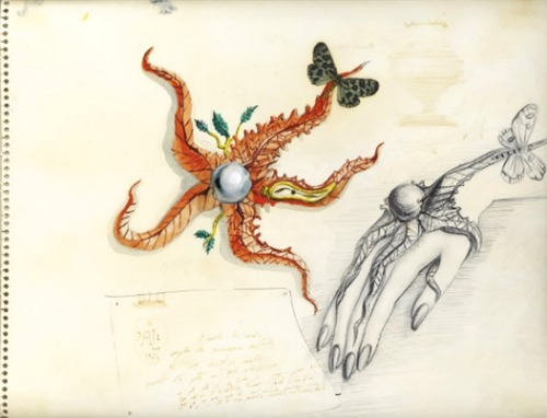 """A Design For 'Etoile De Mer'"" by Salvador Dalí (1950) Original illustration for Dali's surrealistic Starfish Broach"