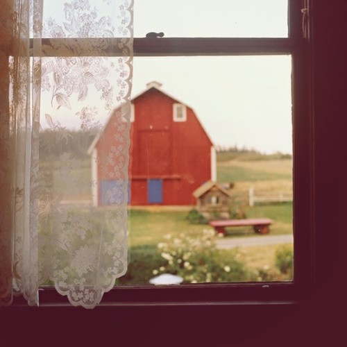 resolutewoman:  wisconsin through the window.