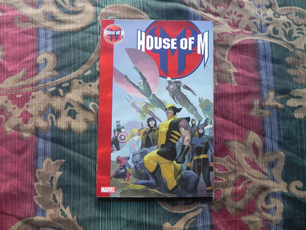 "ticalandthings:  X-Men ""House Of M"" Inspiration for my future"
