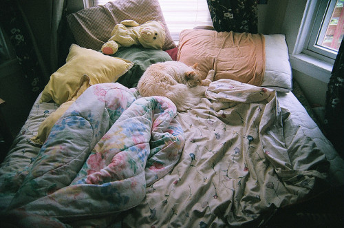 untitled by kelsie marie on Flickr.
