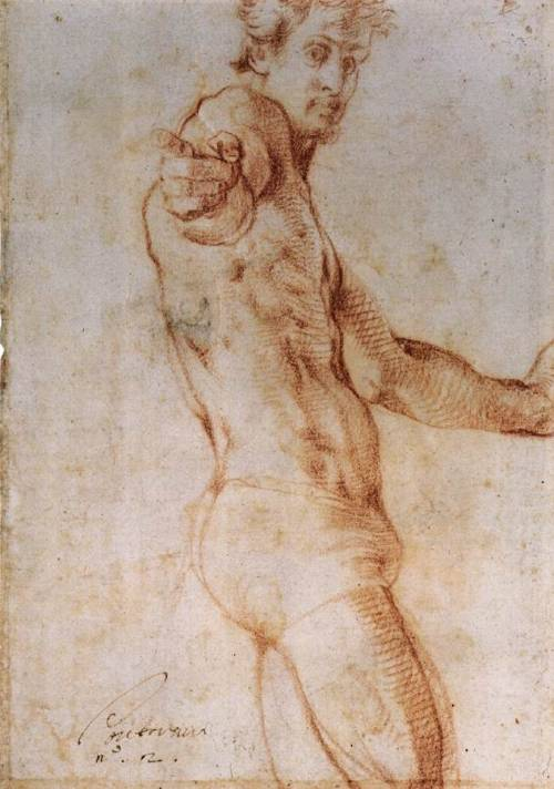 cavetocanvas:  Pontormo, Self Portrait, 1525