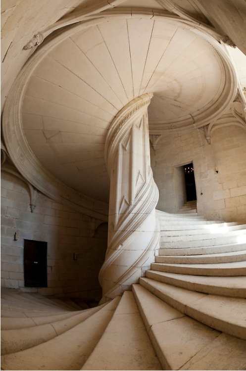 missclass:  Chateau de la Rochefoucauld Stairway II by Chris Tarling