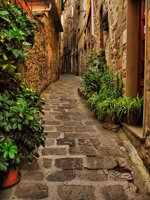 Narrow Street, Liguria, Italy photo via heartbeatz