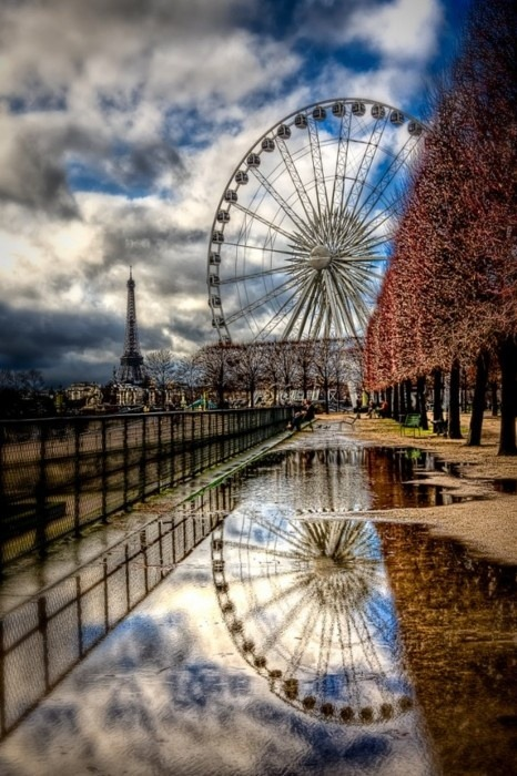 aaamazingworld:  Tuileries, Paris