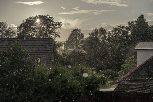 The View out of my window.  Summer Shower.  ADVaughan