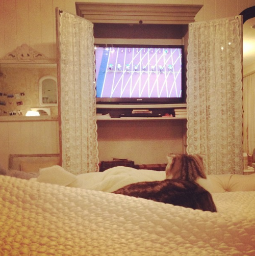 @taylorswift13: She's actually watching the Olympics.
