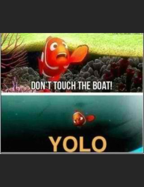 Teaching kids yolo at a young age. SMH