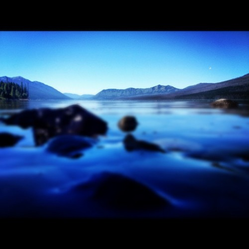 Bowman lake..#camping #lake  #montana #sunhwy #summer #roadtrip #travel #tourism  (Taken with Instagram)
