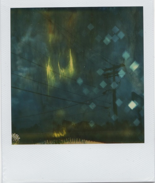 Expired Polaroid 600 Film