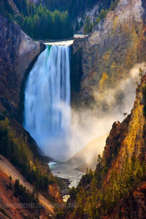 watcher-of-the-skies:  Lower Falls. Grand Canyon of Yellowstone. Wyoming. USA.
