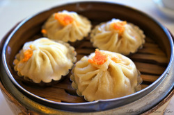 ileftmyheartintokyo:  Juicy Pork Dumplings - 小籠包 by Tohru にゃん on Flickr.