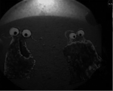 """WORST NIGHTMARE CONFIRMED.""  /via @StephLaberis #msl"