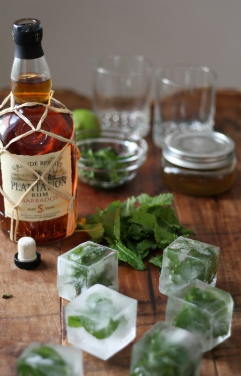 I see an attempt at making mint ice cubes forthcoming…