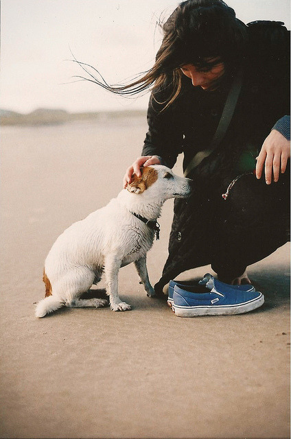 Lucy wants a dog by Bazzerio on Flickr.