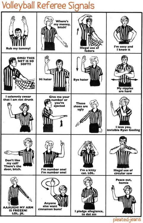 pleatedjeans:  Volleyball Referee Signals