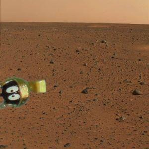 religiousragings:  The *real* first image from the Mars rover.  We are in deep sh*t now.