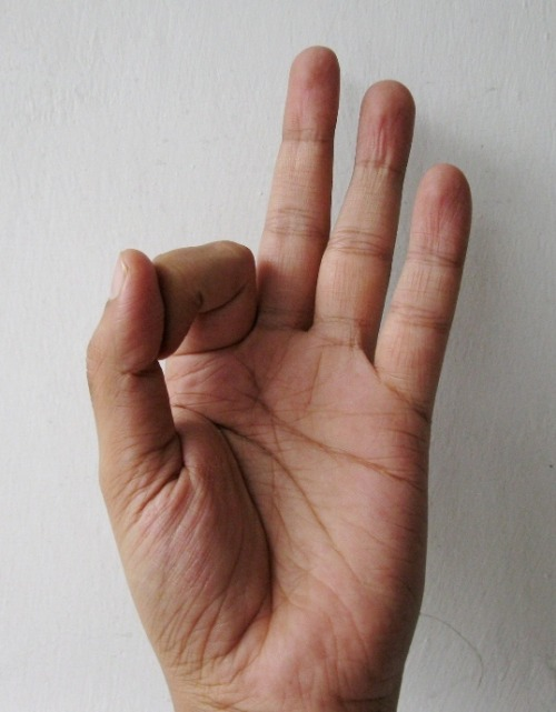 Gyan Mudra / Chin Mudra variation - gesture of knowledge Gyan Mudra / Chin Mudra is a well known mudra in Hatha Yoga and across spiritual traditions. The mudra is formed by joining tips of index finger and thumb. When your fingers point up to Heaven, it is called the Gyan Mudra, however, when your fingers point down to Earth, it is called the Chin Mudra. The connection of index finger and thumb symbolize elated consciousness. The circle formed by joining thumb and index finger portrays the ultimate goal of yoga.  Unify consciousness into zero or infinite. The three extended fingers represent sattva, rajas and tamas gunas. The variation indicated in the picture is formed by joining the tip of your index finger with the first thumb joint and applying light pressure on the nail of your index finger. Chin Mudra is a remedy for mental disorders, insomnia, high blood pressure and depression. Chin Mudra enhances memory and improves concentration. Chin Mudra helps in opening up of psychic centers and stimulates Pineal gland. Chin mudra has a multiplying effect when performed in a meditative pose. The mudra can be practiced from 15 minutes to 45 minutes.