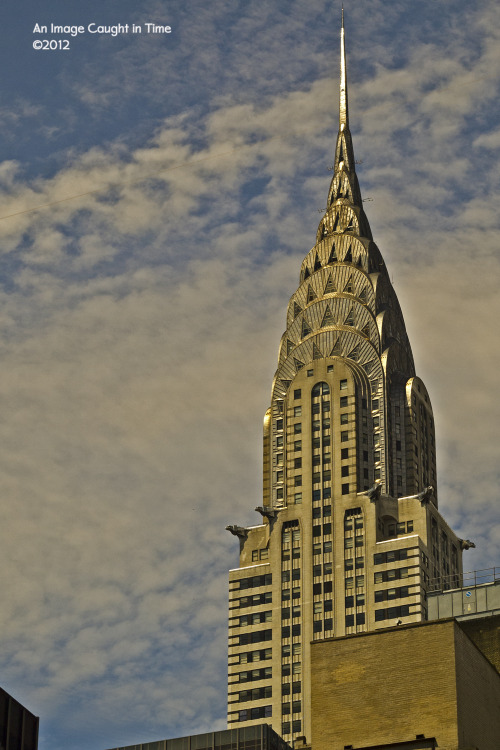 Chrysler Building  (I was testing out my Olympus EPL-1 with a Canon 50mm 1.8 FD lens)