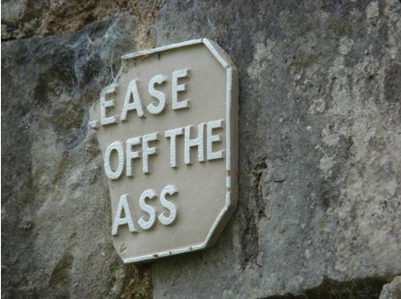 "Ease Off the Ass ""Don't tell me how to live my life. You're not even my real sign!"""