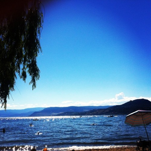 This is where I spent the last couple afternoons #beach #okanagan #okanaganlake #kelowna #trip #adventure #sun #shore #lake #sky #summer #relaxation #ogopogo (Taken with Instagram)