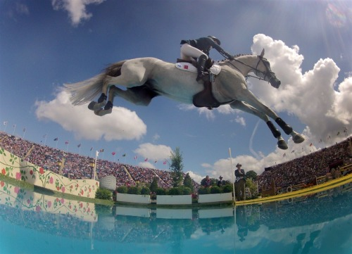 Equestrian jumping at the Olympics The 3rd qualifying round of individual equestrian jumping, along with the team jumping final took place at Greenwich Park during the London Olympics today. View the individual rankings at London2012, and read about the team medal recipients at Reuters. Photo: Penelope Leprevost of France rides 'Mylord Carthago' during the equestrian jumping competition in Greenwich Park at the London Olympics on Aug. 6. (Jim Hollander / EPA)