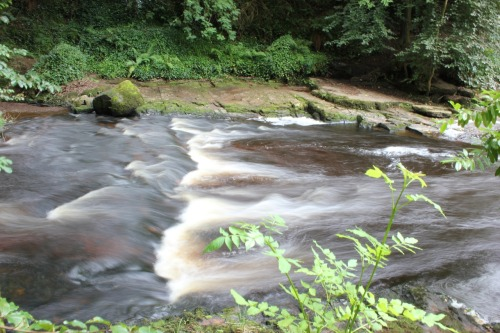 Flowing water and long shutter speed = pretty