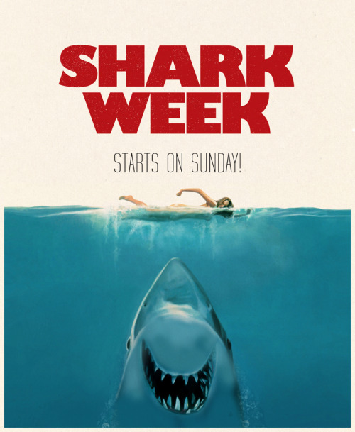 Shark Week Starts This Sunday!