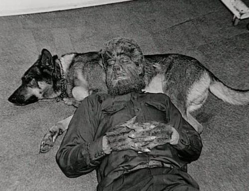 "Lon Chaney Jr. takes a ""cat nap"" on his dog Vic during the filming of The Wolf Man (1941)"