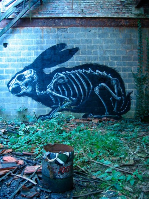 ::Inspiring Artwork:: - fer1972: Rabbitt by Roa