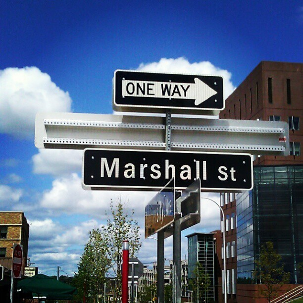 #birdlibrary in #syracuse, #marshall street by @anbywarhal at instagram