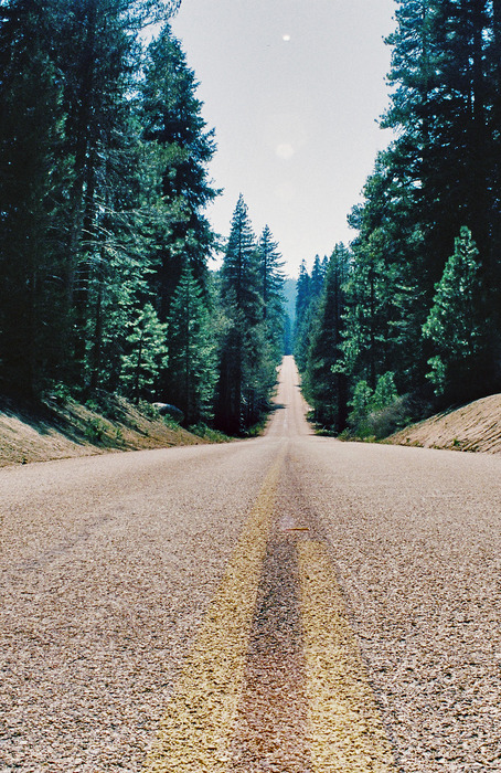 gnostic-forest:  I want to be on the road, travelling somewhere lovely