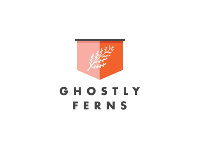 visualgraphic:  Ghostly Fern