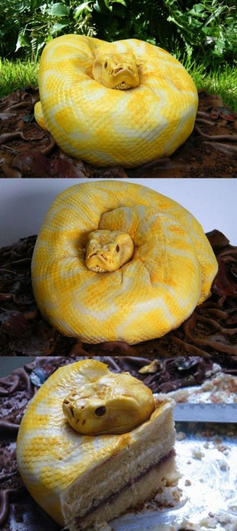 terribleflower:  WHOA  Holy crap I thought this was a real snake.
