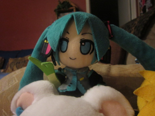 My niece plays with miku all the time its really cute I think I should get her one of her own.
