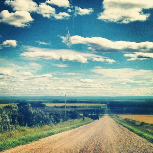 quitelikearthurdent:  Beaverlodge (Taken with Instagram)