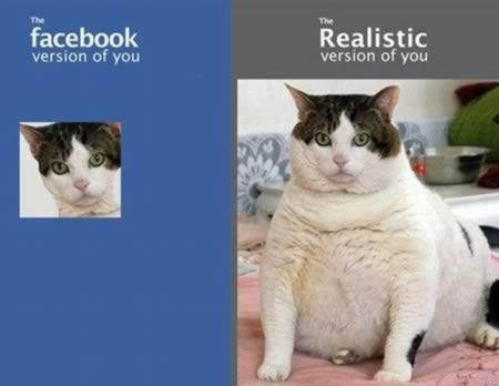 megalodan:  i prefer the realistic version. if you are that cat please message me on facebook my url is wowareallifewizard thanks in advance mr or mrs cat.