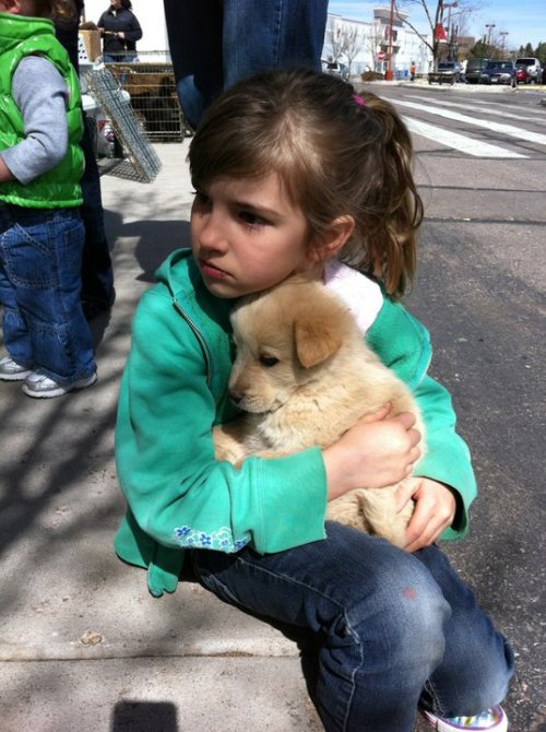 The puppy is cuter than the girl tbh