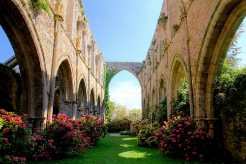 Abbey of Beauport, France via Sapin_57