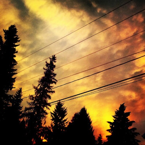 Definitely obsessed with the #sky! #skyline #clouds #trees #Oregon #sunset #instagram #instagood #love (Taken with Instagram)